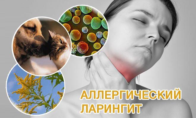 Причины, симптоматика, формы аллергического ларингита и особенности его лечения