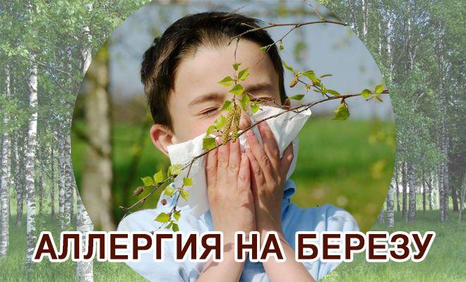 Аллергия на березу