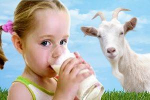 Аллергия на козье молоко у детей