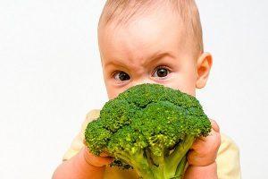 Бывает ли аллергия на брокколи у грудничка?