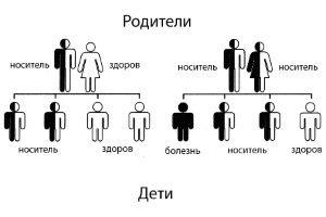 Наследственная форма (НАО)