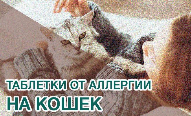 Таблетки от аллергии от кошек
