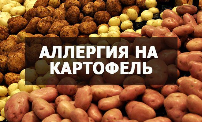 Аллергия на картофель
