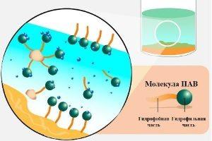 Молекула ПАВ