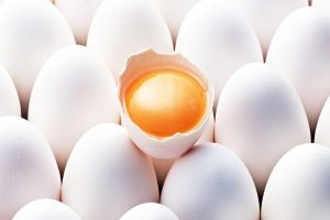 Состав белка яйца