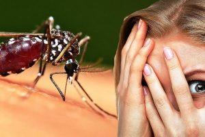 Реакция на укусы насекомых