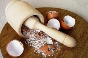 Измельчение скорлупы яиц
