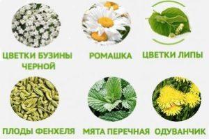 Противоаллергенные травы