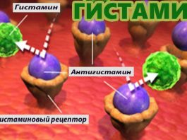 Гистамин