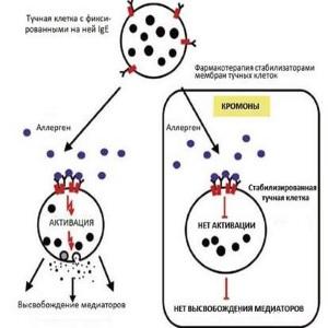 Стабилизаторы мембран тучных клеток